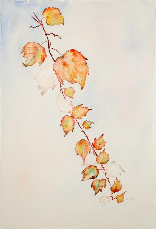 akvarell 10